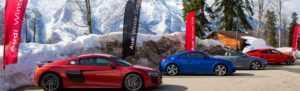 В Сочи прошёл Audi Winter Cup